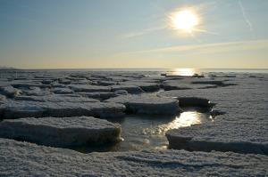 Mořský led v Arktidě